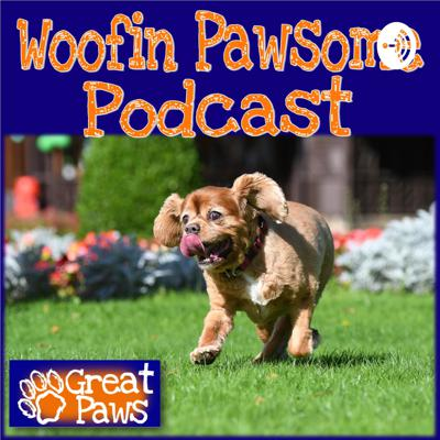 A podcast for the pooch parent, the doggy daft or the canine professionals of the world.