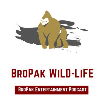 Welcome to the everyday life of Bropak. Our host are Ben, Dee and Fluffy , and this is where you will experience our thoughts, behaviors and be inside the minds of three BROPAK. We speak from experience and crave for journeys! With that being said, Welcome to the Wild-life!