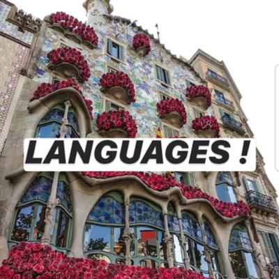 university project with material focused on languages