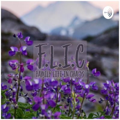F.L.I.C : Family Life In Chaos