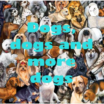 Dogs, dogs and more dogs