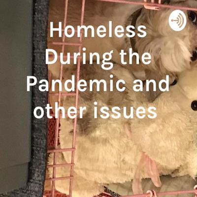 Homeless During the Pandemic and other issues