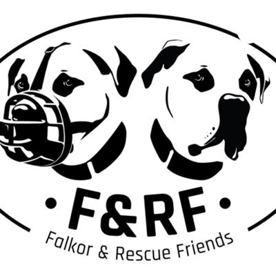 Falkor And Rescue Friends