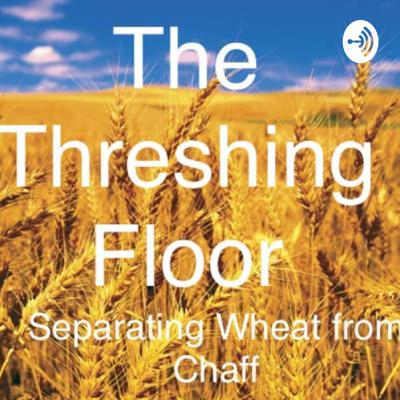 Teaching the Bible verse by verse to separate wheat from chaff and truth from falsehood.