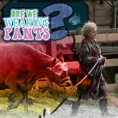 Cover art for Are We Wearing Pants - Episode 5: When Animals & Fans attack
