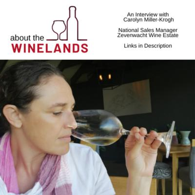About The Winelands