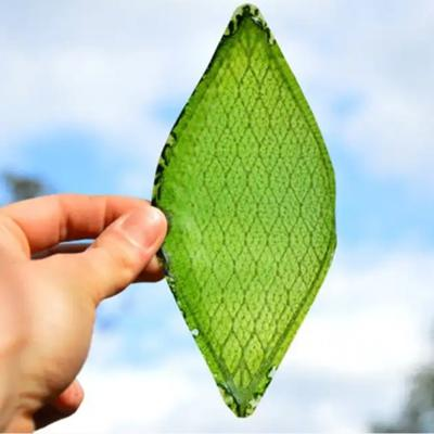 Episode 11- artificial leaves