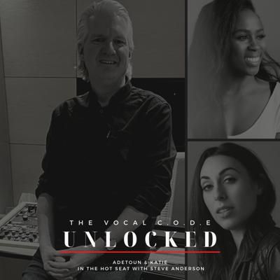 Cover art for The Vocal Code Unlocked Season 2 In The Hot Seat with Steve Anderson Part 2