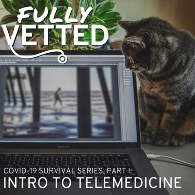 06. Veterinary Telemedicine: Embracing the Technology