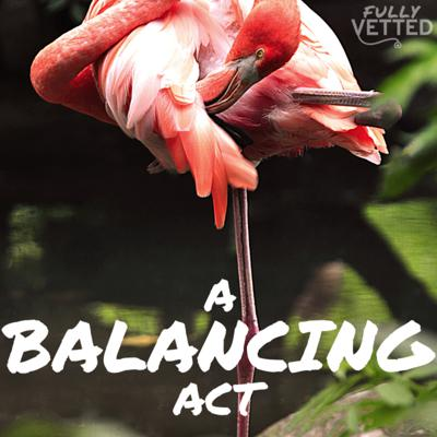 Cover art for 19. Balancing Act: How to