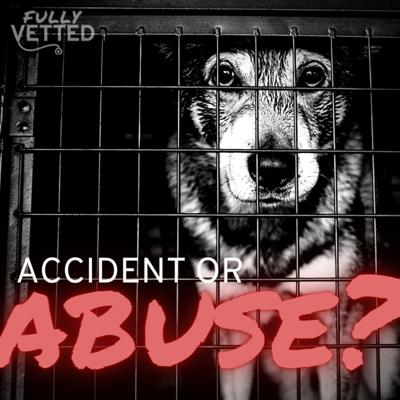 Cover art for 23. Accident or Abuse? How to Differentiate