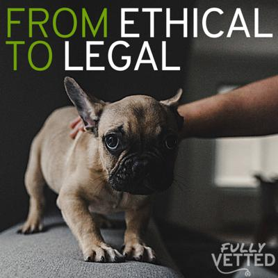 Cover art for 27. Reporting Animal Abuse: From Ethical Responsibility to Legal Requirement