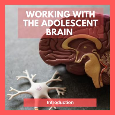 Cover art for Working with the Adolescent Brain: Introduction episode