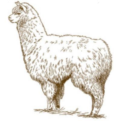 """Cover art for Episode 1: Weird scp of the week- """"Larry the loving llama"""""""