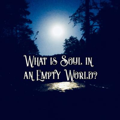 Cover art for What is Soul in an Empty World?