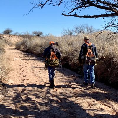 Cover art for Jan 2020 Mearns, Blues, and Gambels Quail Hunting. New Ideas, Pitfalls, Problems