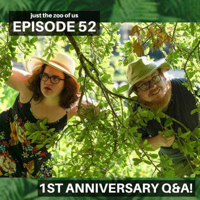 Cover art for 52: Our First Anniversary Q&A!