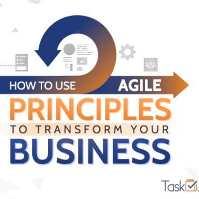 Cover art for How To Use Agile Principles To Transform Your Business