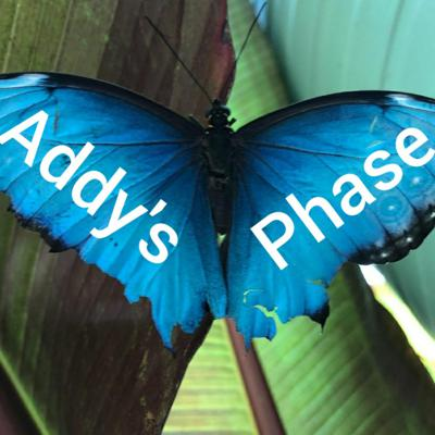 Cover art for Welcome To Addy's Phase