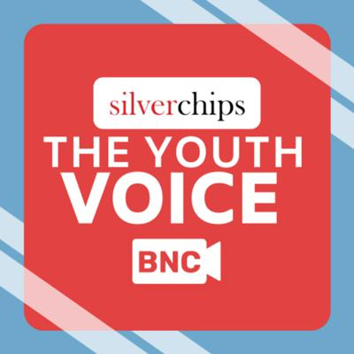 Cover art for THE YOUTH VOICE EPISODE 1: THE 2020 ELECTION