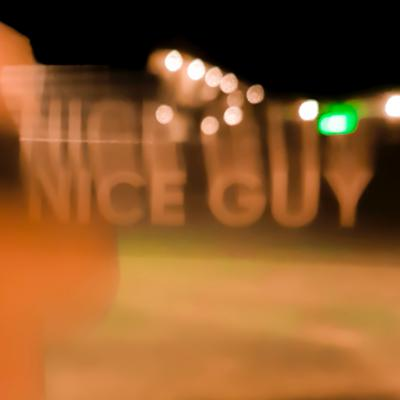 Cover art for we are the nice guys