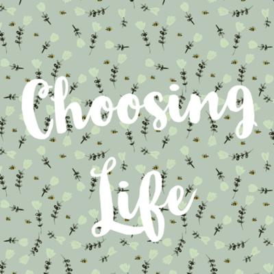 Cover art for Choosing Life: Valley for the Voiceless Interview