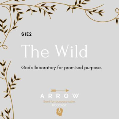 Cover art for S1E2: The Wild, God's laboratory for promised purpose.
