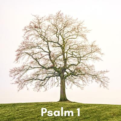 Cover art for Psalm 1 (Mon): friends but not partners