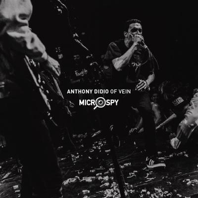 Cover art for Anthony DiDio of Vein