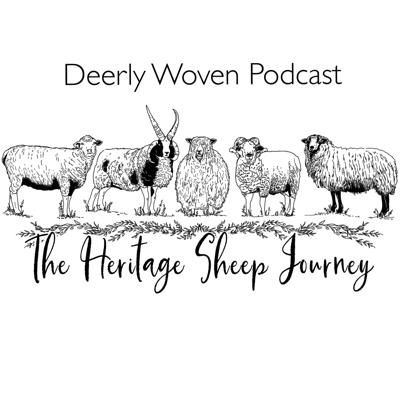 Cover art for Ep:16 The Heritage Sheep Journey - The Romance behind Leicester Longwools