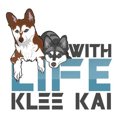 Cover art for Life With Klee Kai Episode 1 - Baylee / Myloveonpaws