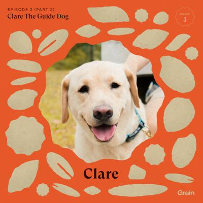 Cover art for Grain - (Part 2) Chia Hong Sen, Clare The Guide Dog