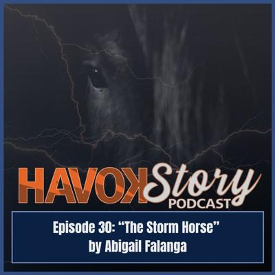 Cover art for The Storm Horse
