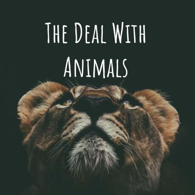 The Deal With Animals