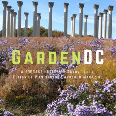 All about gardening in the greater Washington, DC, and Mid-Atlantic area. Hosted by Kathy Jentz, editor of Washington Gardener Magazine (www. WashingtonGardener.com).  Support this podcast: https://anchor.fm/kathy-jentz/support