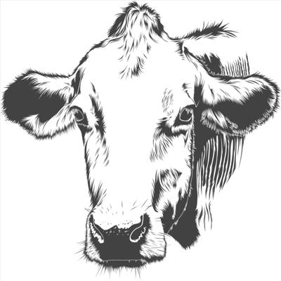 Chechero Agriculture Podcast