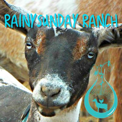 RainySunday Ranch