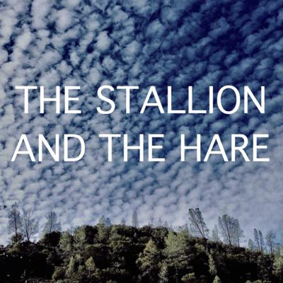 The Stallion and the Hare