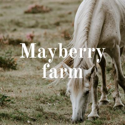 Hello welcome to my Podcasts! In these podcasts, I will be going over different clicker training techniques with my animals. I often do series, so you can join along with your horse. You can also follow along with the series through Instagram. My account is Mayberry_farm_. There I blog about all my animals and training techniques. Enjoy!