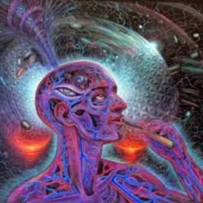 Assimilated Minds