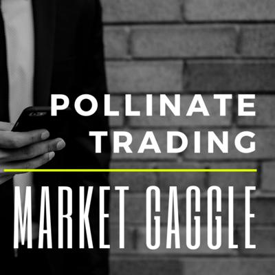 The Market Gaggle by Pollinate Trading