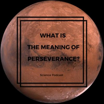 What is the meaning of Perseverance?
