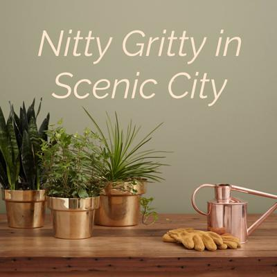 Nitty Gritty in Scenic City