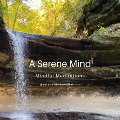 Relax with 5-10 minutes of mindful breathing meditation. This is a great way to begin your day or unwind at the end of your day.   If you are interested in 5-10 minute meditations, join me as we cover breath work, relaxation, and a serene mind.   Listen to my show and be sure follow me on Spotify, Apple podcasts, or subscribe wherever you listen to podcasts so you don't miss a moment of relaxation.   I'd love to hear from you! You can find me on Facebook @serenemindmeditations or email me at serenemindmeditations@gmail.com.  Support this podcast: https://anchor.fm/aserenemind/support