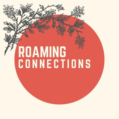 Roaming Connections