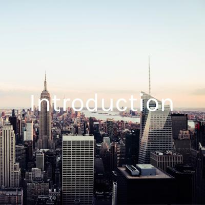 Introduction - Internships in NYC