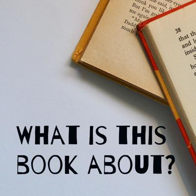 What is this book about?