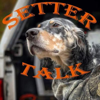 Discussing all things setters— hunting across North America, training, breeding, health, bloodlines.