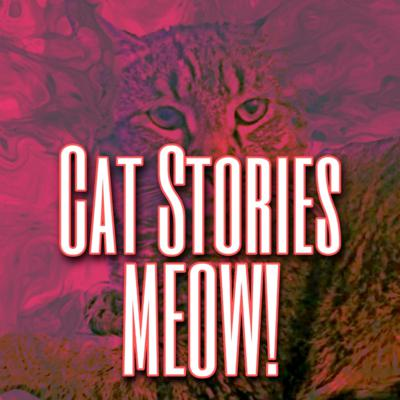 Cat Stories Meow!