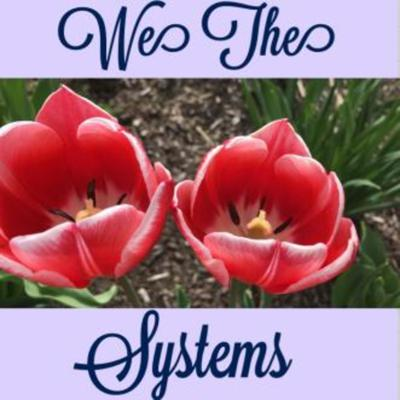 We The Systems